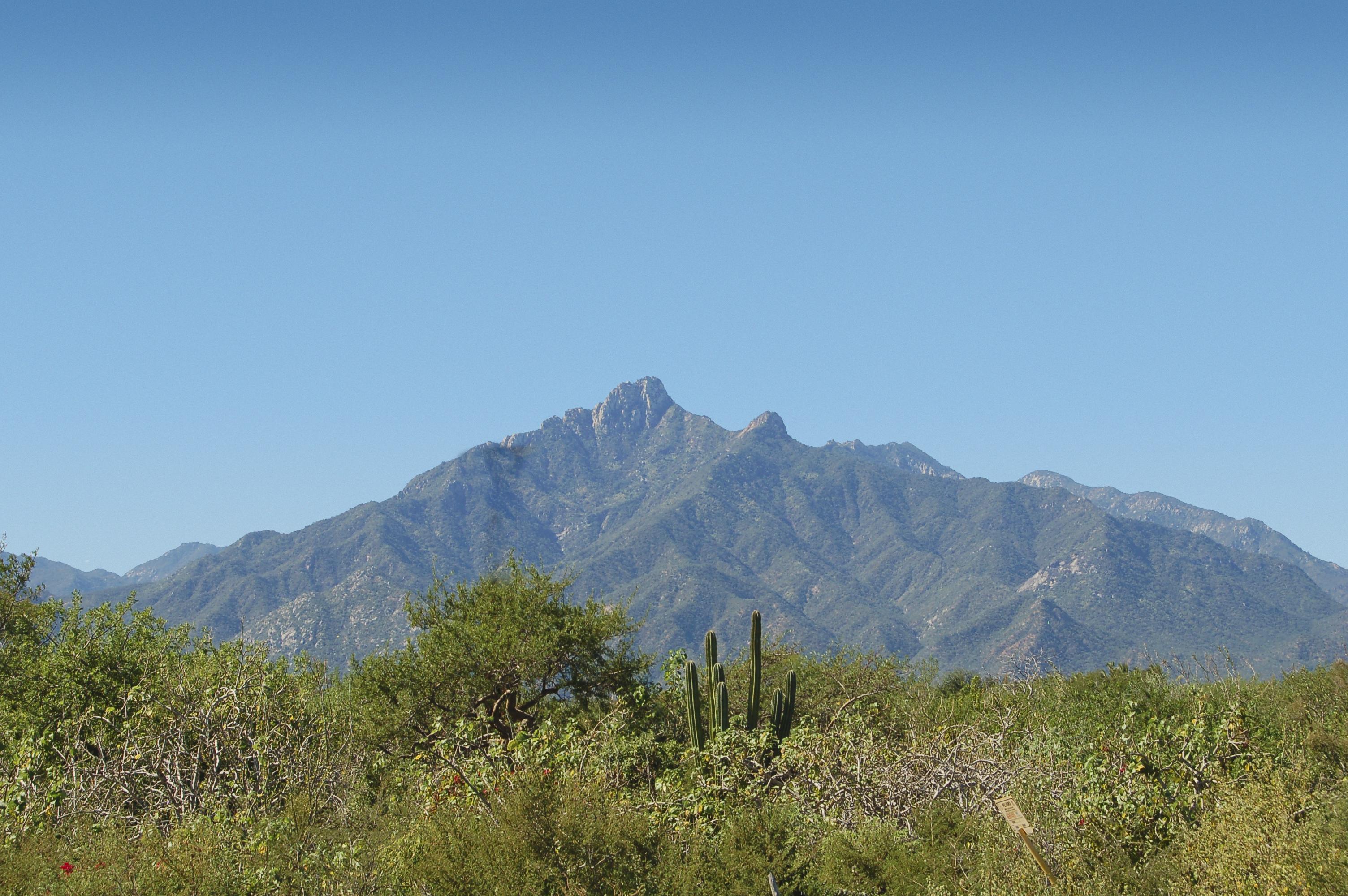 The Sierra Laguna range from Highway 1, Baja Sur