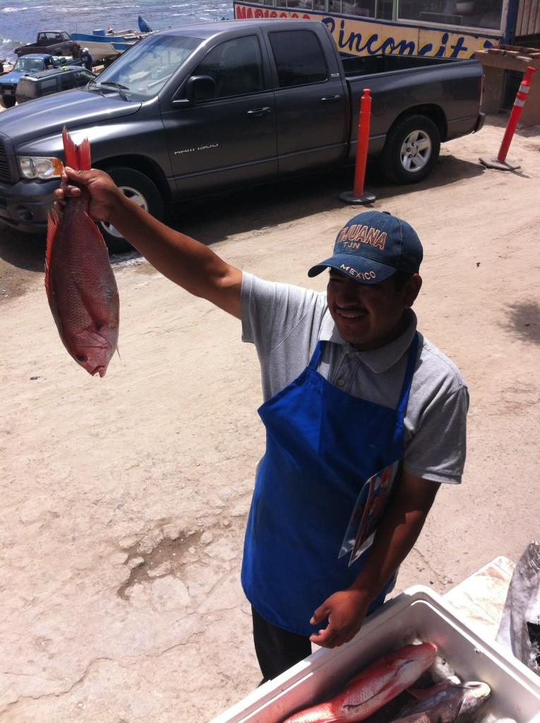 Today's Catch in Popotla, Baja Norte