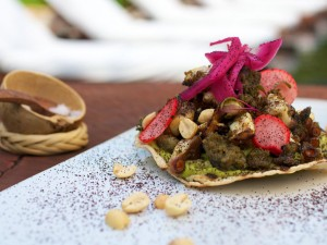 Cooking for Cancer, Contemporary Mexican Cuisine, La Jolla, California