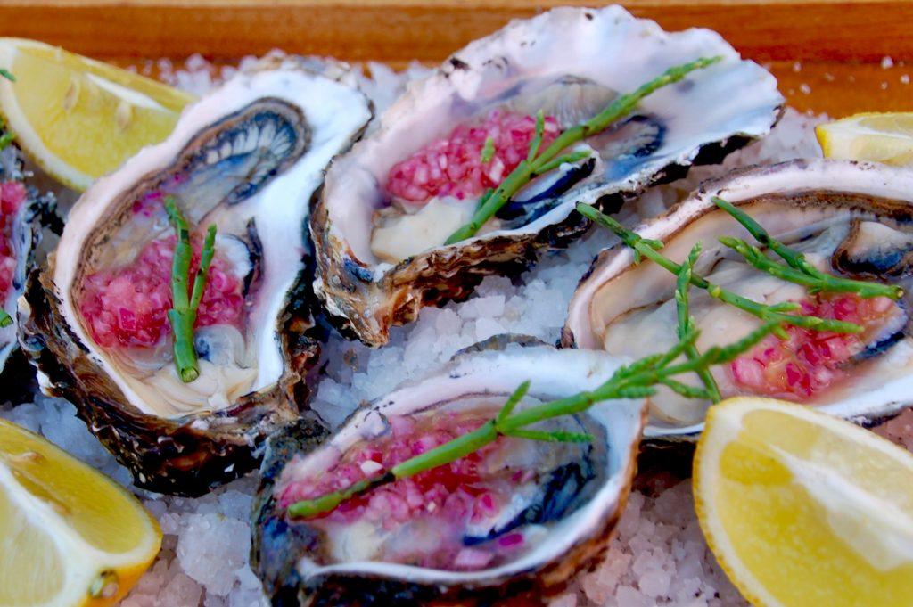 Pacific oysters, El Clavo, Valle de Guadalupe, Ensenada, Baja California, Mexico